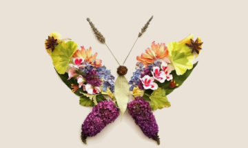 Nature Butterfly Craft