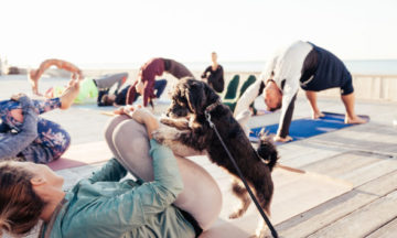 Puppies + Pilates